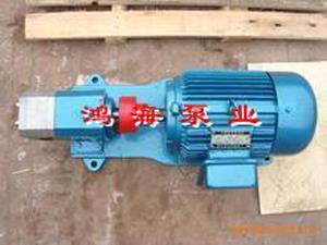 润滑泵-<a target='_blank' title='润滑油泵,油泵,泵-齿轮泵系列 ' href='/chanpin/clb_1.html'>润滑油泵</a>-<b>不锈钢外润滑泵</b>